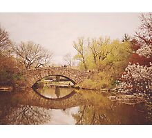 Beautiful Springtime Landscape - Central Park - New York City Photographic Print