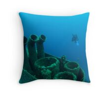 leaving the wreck Throw Pillow