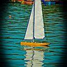 Sailing...  in the Park... by Nira Dabush
