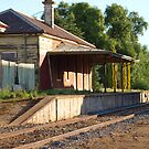 Old Carisbrook Railway station by Julie Sleeman