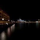 Sydney Opera House by Sylvia Wu