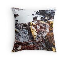 Where did he go???  Throw Pillow