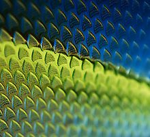 Colourful Carbon by Craig Fletcher