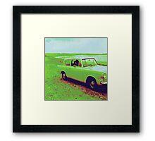 Honk Honk Framed Print