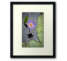 Flower in Bangkok Framed Print