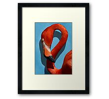Curves, A Head Framed Print
