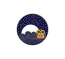 Night Owl - Circle Design Photographic Print
