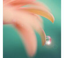Pinkquoise drop Photographic Print