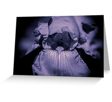 Iris (Flowers collection) Greeting Card