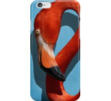 Curves, A Head iPhone Case/Skin