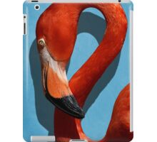 Curves, A Head iPad Case/Skin