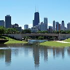 Lincoln Park Zoo - Skyline Reflection by Tom Aguero