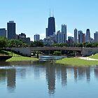 Lincoln Park Zoo - Skyline Reflection by Tom Aguero