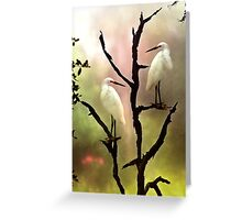 Roosting Egrets Greeting Card