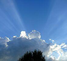 Crepuscular Rays by garytx