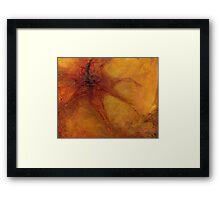 Organic, Orange Framed Print