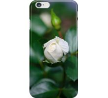 Country Rose iPhone Case/Skin