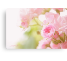 Rose collection 2 Canvas Print