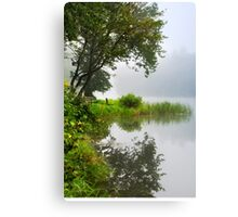Under a Tree by the Lake Landscape Canvas Print
