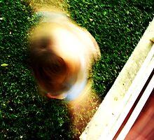Circle the Drain... by Margo Naude