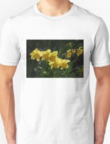 Sunny, Windy Spring Garden with Daffodils T-Shirt