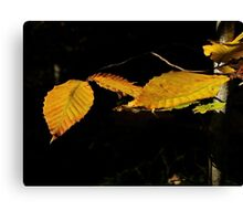 Nova Scotia Leaf Monster Canvas Print