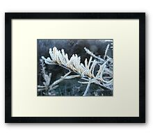 A Cold and Frosty Morning Framed Print
