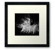 i wish Framed Print