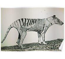 The Thylacine Poster