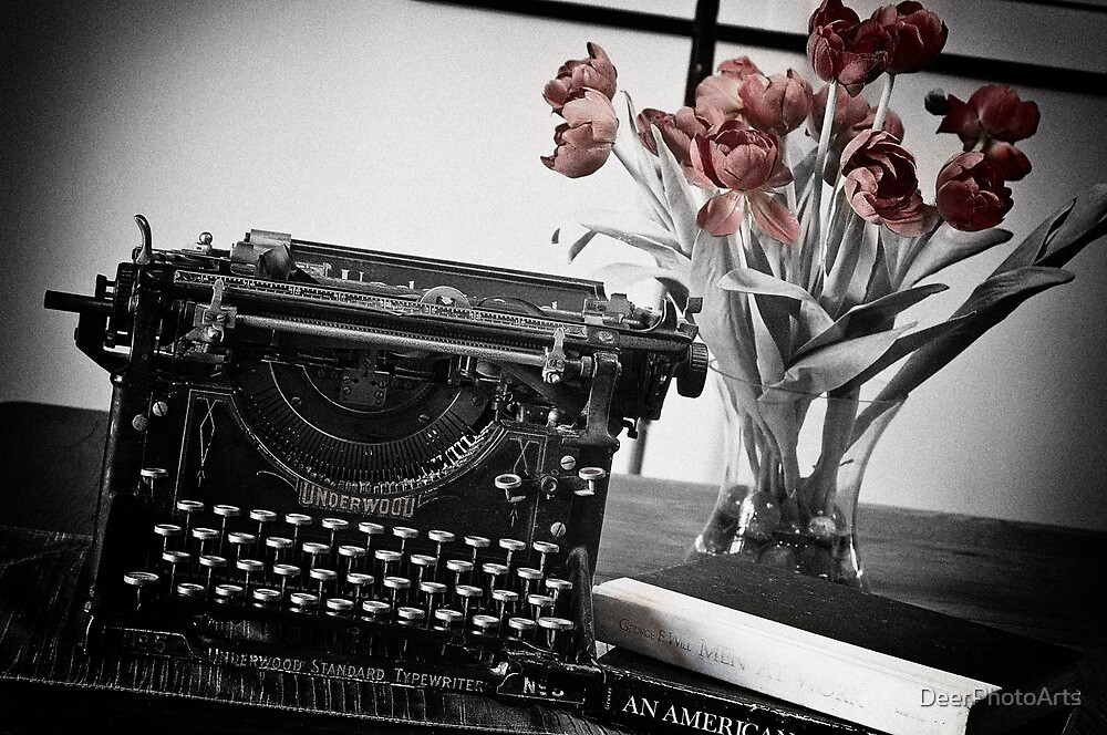 Novelist At Work by DeerPhotoArts