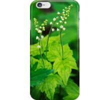 Bishops Cap Wildflower Art iPhone Case/Skin