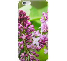 Beautiful Lilac Flowers iPhone Case/Skin