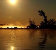 Misty Island by Debby1