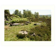 millstones in the grass Art Print