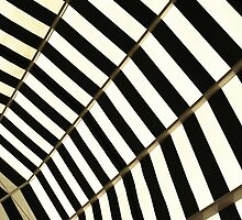 Awning (1) by Marjolein Katsma
