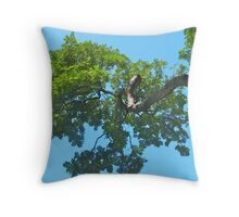 Green and Blue Throw Pillow