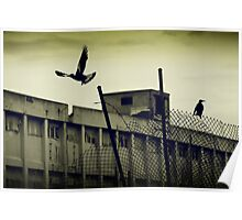 Magpies - Fremantle Power Station Poster