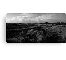 Dunes of Denmark  Canvas Print
