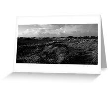Dunes of Denmark  Greeting Card