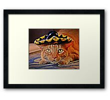 Cat in the Black Sombrero Framed Print