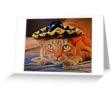 Cat in the Black Sombrero Greeting Card