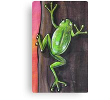 Frog - Day 7 - 'Creation' Mural Canvas Print