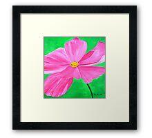 A Pink Flower Framed Print
