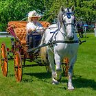 Carriage Classics by ECH52