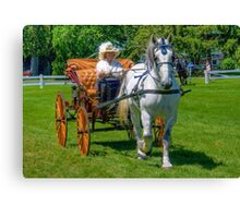 Carriage Classics Canvas Print