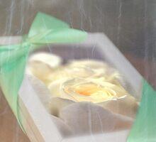 Gift Framed Rose © Vicki Ferrari by Vicki Ferrari