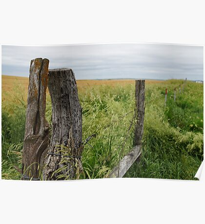 Fence receding in front of a field. Poster