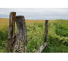Fence receding in front of a field. Photographic Print