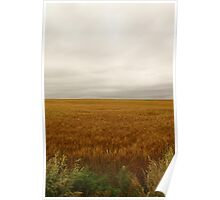 The majestic sky and vast field Poster