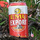 Beer Bush by Rick Playle